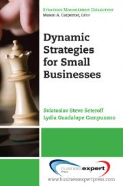 Dynamic strategies for small business