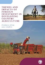 Trends and impact of foreign investment in developing country agriculture:evidence from case studies