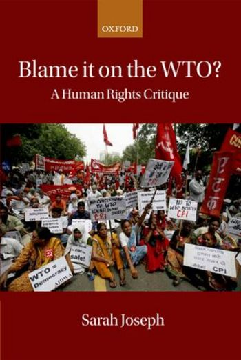Blame it on the WTO?:a human rights critique