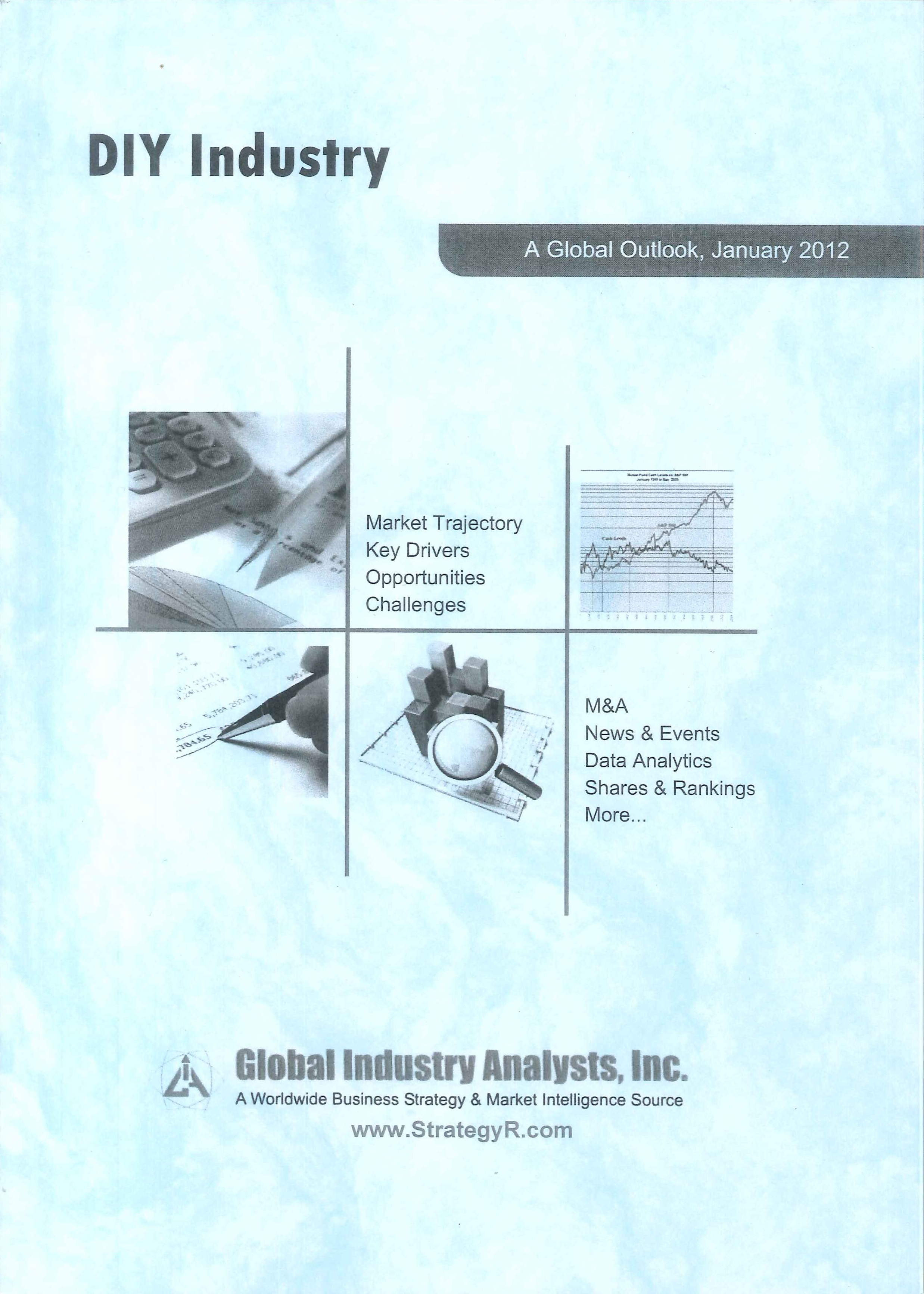 DIY industry [e-book]:a global outlook