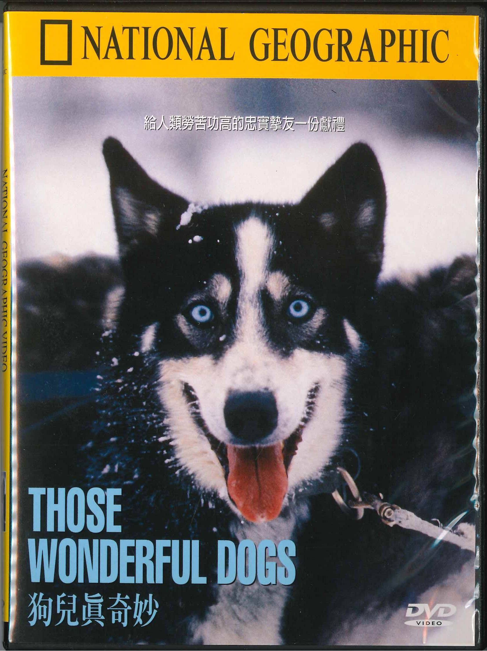 狗兒真奇妙 [錄影資料]=Those wonderful dogs