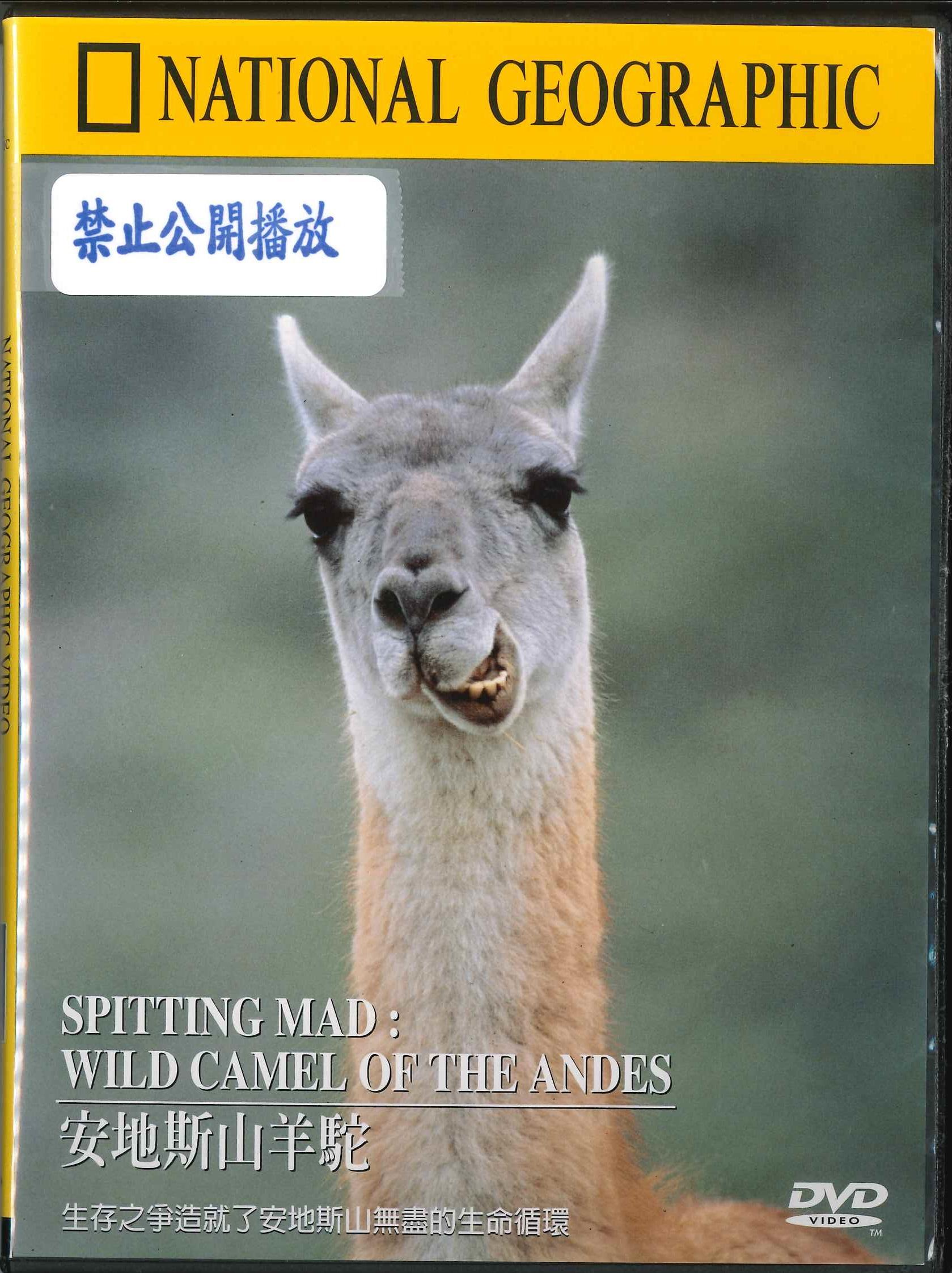 安地斯山羊駝 [錄影資料]=Spitting mad : wild camel of the Andes